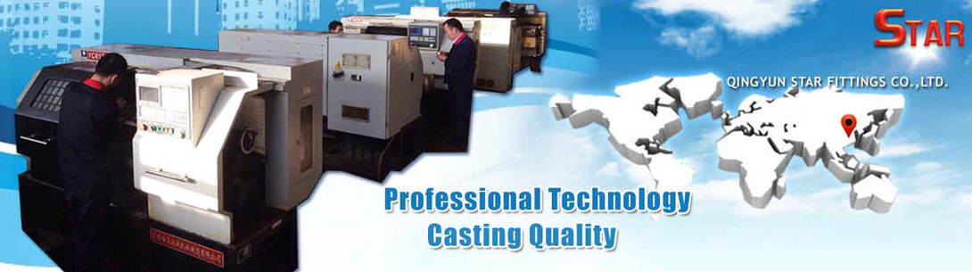 Professional Technology Casting Quality